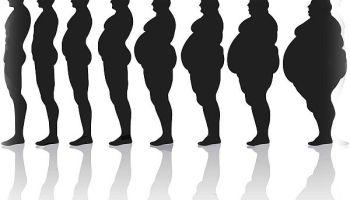Besin ve Beslenme Nedir ?, Bursa Uzman Diyetisyen & Fitoterapist Nursena Ardalı