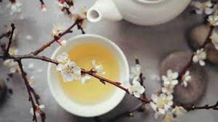 beyaz çay özellikleri