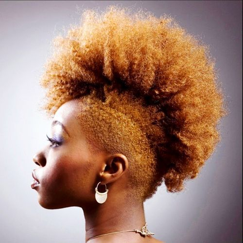 Extra Special Natural Hairstyles Mohawk Hairstyles Diy Fashion Hub