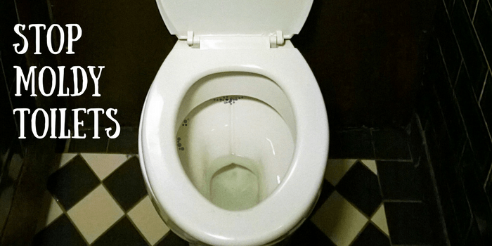 This Clever Hack Will Stop Toilet Mold - DIY Home Health