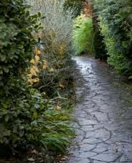 Garden Paths and Patio Designs - Drainage