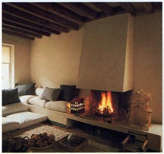 fireplaces with architectural character