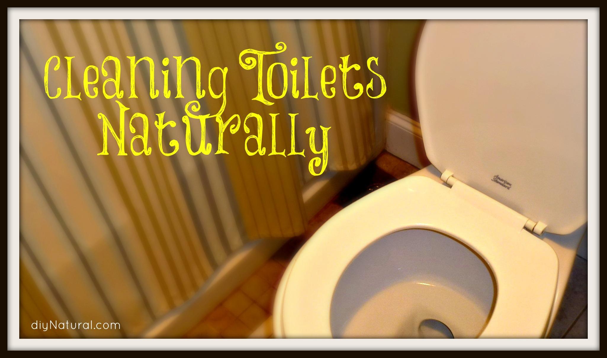 homemade toilet bowl cleaner 3 natural