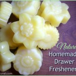 Homemade Drawer Freshener Beeswax And Essential Oils