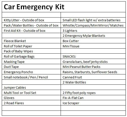 Earthquake Kit For Car