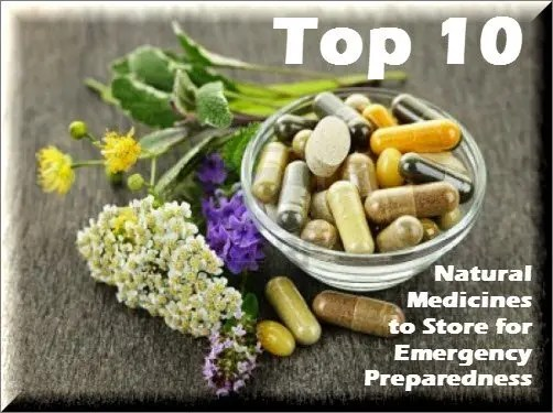Top_Ten_Natural_Medications_DIY_Preparedness