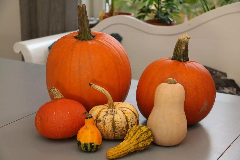 Ryobi Pumpkin challenge