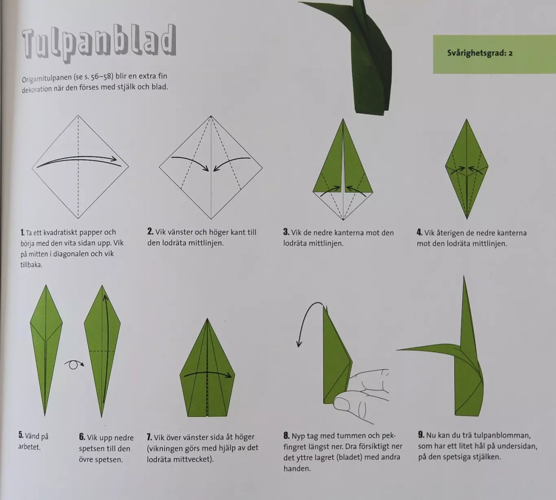 Tulpan origami