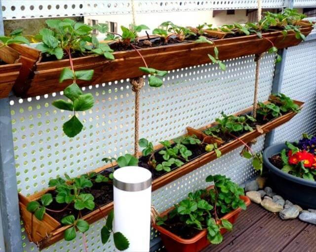 Diy Garden Idea For Decorating Inexpensively