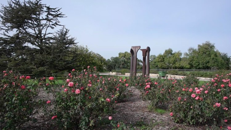 Wohl Rose Park