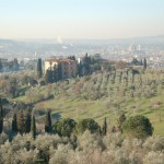 Florence and Duomo di Firenze from San Domenico