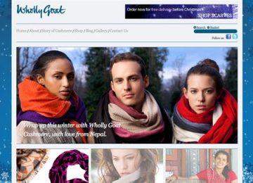 E-commerce website online store