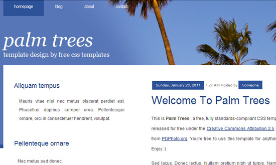 40 High Quality Free XHTML/CSS Web Template for Developers 16