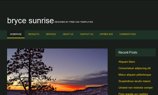 40 High Quality Free XHTML/CSS Web Template for Developers 25