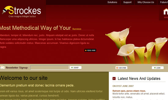 40 High Quality Free XHTML/CSS Web Template for Developers 30