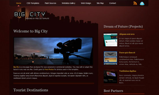 40 High Quality Free XHTML/CSS Web Template for Developers 8