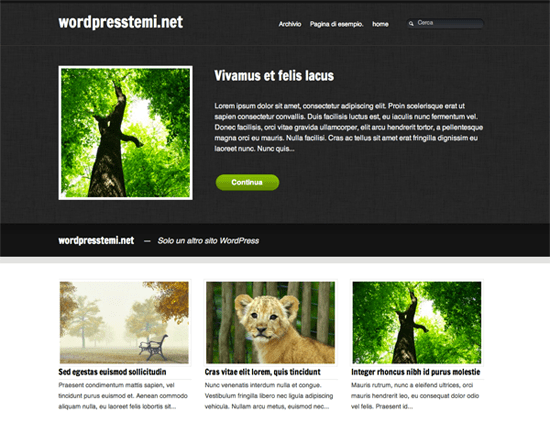 20 Awesome Free Wordpress Themes of 2011 12