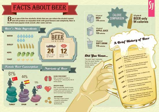 25 Awesome Infographic Designs 24