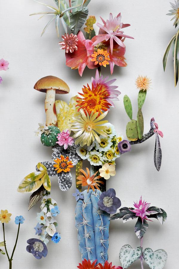 Beautiful Flower Illustrations for designers Inspiration 3
