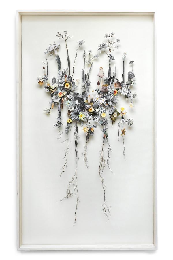Beautiful Flower Illustrations for designers Inspiration 4