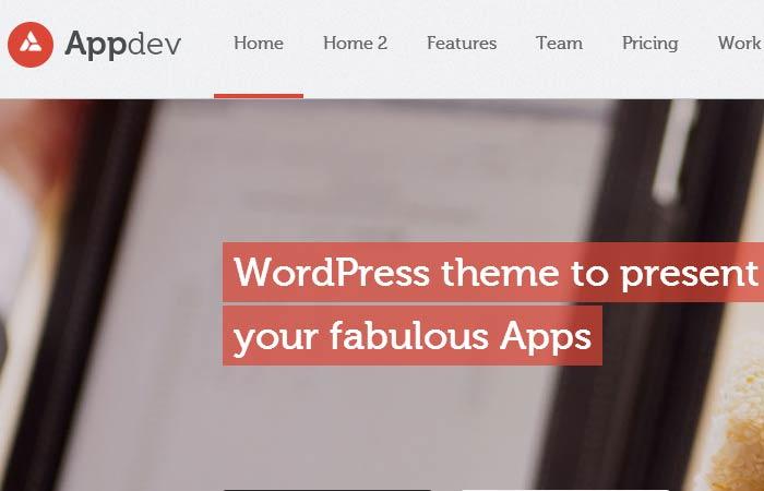 20 Free and Premium Responsive Wordpress Theme 12