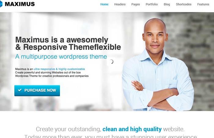 20 Free and Premium Responsive Wordpress Theme 13