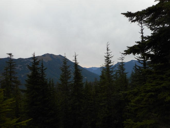 View NE from McClellan Butte trail
