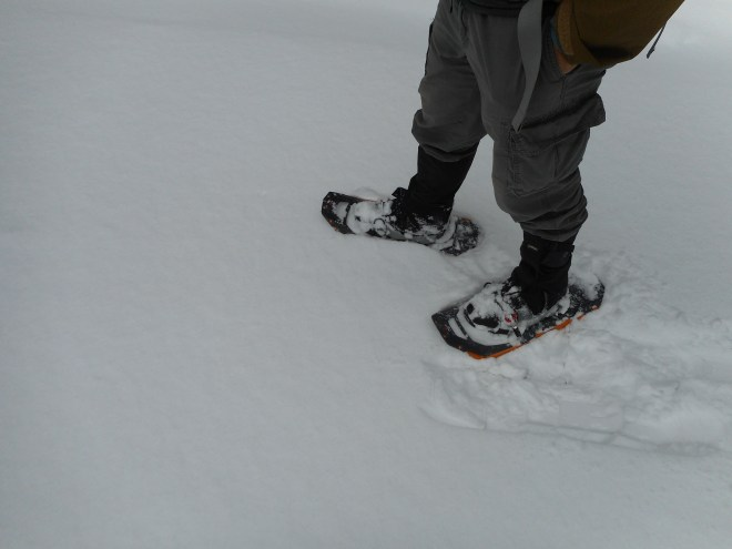 There's no shoes like snowshoes