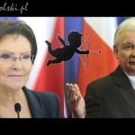 Miłość do Kaczyńskiego programem PO