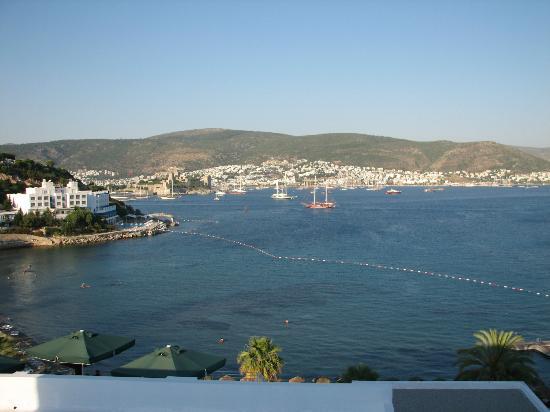 Bardakci Cove