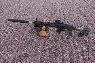 D&L Custom SLR/Carbine
