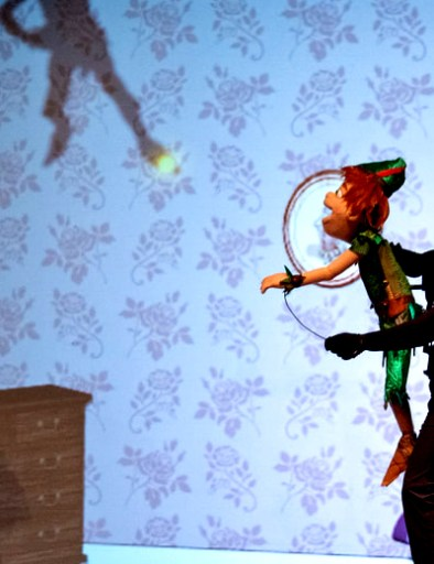 DLUX Ent Peter Pan Wendy and Shadow