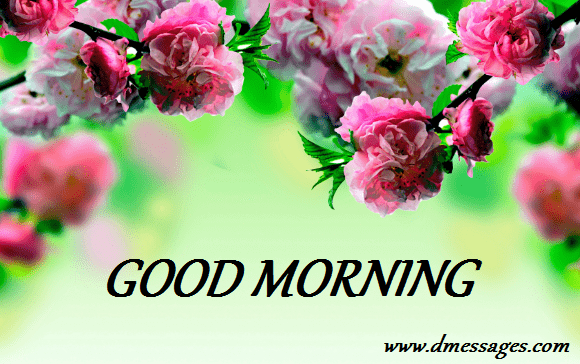 Good morning messages for friends - Dmessages