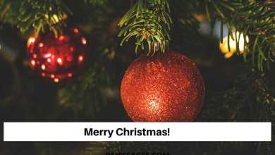 Photo of 280+ Merry Christmas Card Messages For friends and family – Xmas 2019