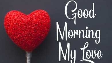 Photo of *BEST* 50+ Romantic Good Morning Wishes Messages For Boyfriend