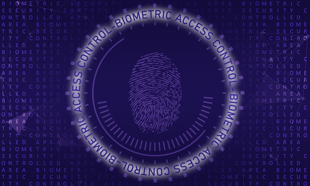 biometric, access, authentication