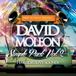 David Moleon Samplepack Vol.2