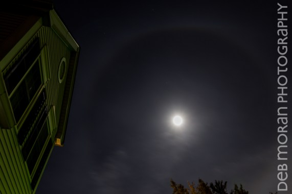 22 Degree Halo Around the Moon