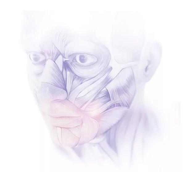 implantologie visage en 3D