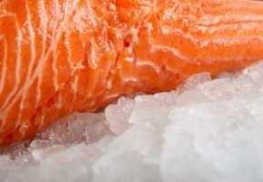 Salmon-300x208