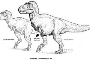 pregnant T-rex