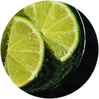 Lime Essential Oil is one of the certified organic ingredients used in DNA Organics hair care and colour products