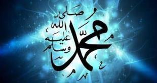 ملفات وبطاقات - عذرا رسول الله