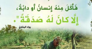 المجتمع المسلم - الغرس والزرع