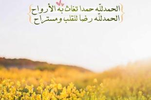 بطاقات الصباح - الحمد لله حمدا تغاث به الأرواح