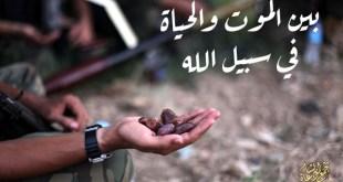 جهاد - الموت والحياة في سبيل الله