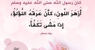 أذكار - الإكثار من الصلاة على النبي