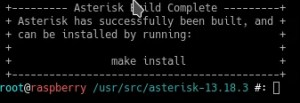 asterisk no raspberry