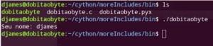 Gerar binário a partir do script Python
