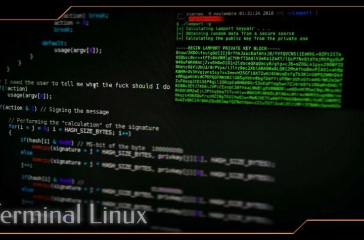 gravar terminal no Linux